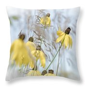 Coneflower And Bee 1  Throw Pillow