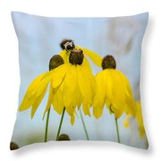 Coneflower And Bee 2  Throw Pillow