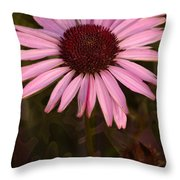 Coneflower And Dusty Miller Throw Pillow