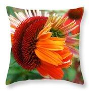 Coneflower Bloom Throw Pillow