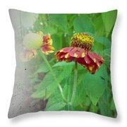 Coneflower Vintage Throw Pillow