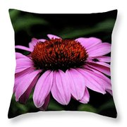 Coneflower With Bug Throw Pillow