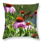 Coneflower With Butterfly Throw Pillow