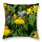 Coneflowers And Friend Throw Pillow