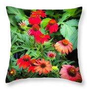 Coneflowers Echinacea Rudbeckia Throw Pillow