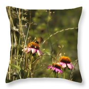 Coneflowers Weeds And Bee Throw Pillow