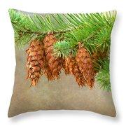 Cones 2 Throw Pillow