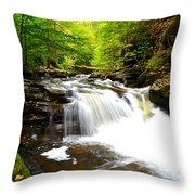 Conestoga Falls Throw Pillow