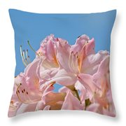 Confectioners Pink Throw Pillow