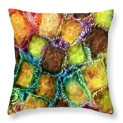 Confections Throw Pillow