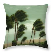 Confronting The Winds Throw Pillow