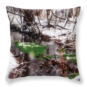 Confused Spring Or Winter Throw Pillow