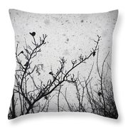 Confusing In The Snow Throw Pillow by Taylan Apukovska