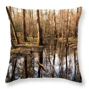 Congaree Reflections Throw Pillow
