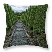 Conifer Lined Water Feature Throw Pillow