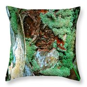 Conquistador Of The Palm Throw Pillow