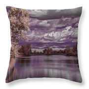 Constant Change Throw Pillow