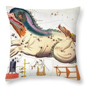 Constellation: Cetus Throw Pillow