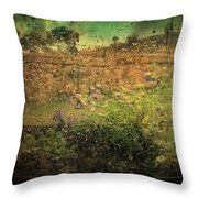 Constrained By Time Throw Pillow