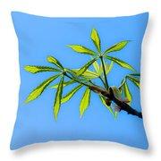 Consumer Grade Tropics Throw Pillow