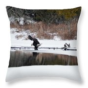 Contact With The Earth 2 Throw Pillow