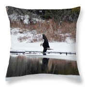 Contact With The Earth Throw Pillow