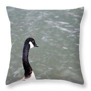 Canadian Goose Contemplating A Swim  Throw Pillow
