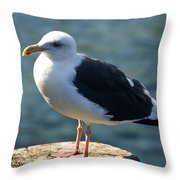 Contemplating Life Of A Sea Gull Throw Pillow