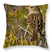 Contemplating The Day Throw Pillow