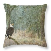 Content And Curious Throw Pillow