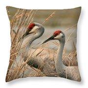 Content Pair Throw Pillow