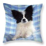 Continetal Toy Spaniel Or Papillon Dog Throw Pillow