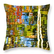 Contorted Clarity Throw Pillow