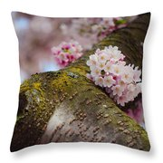 Contrast 1. Pink Spring In Amsterdam Throw Pillow