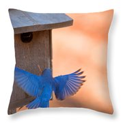 Contrast In Colors Throw Pillow