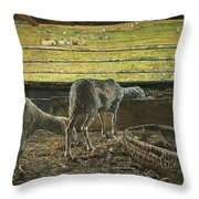 Contrast Of Light Throw Pillow