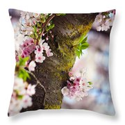 Contrast. Pink Spring In Amsterdam Throw Pillow
