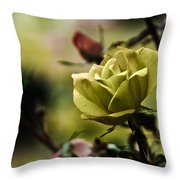 Contrasting Beauty Throw Pillow