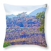 Controlled Burn Area In Kruger National Park-south Africa Throw Pillow