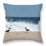 Conversation On The Beach Throw Pillow