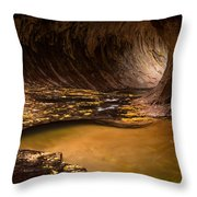 Conveyance Throw Pillow by Dustin  LeFevre