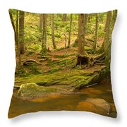 Cook Forest Rocks And Roots Throw Pillow