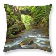 Cook Forest Stream Under The Bridge Throw Pillow