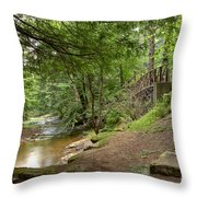 Cook Forest Toms Run Steps Throw Pillow