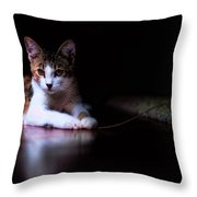 Cookie Portrait Throw Pillow