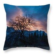 Cooks Meadow Oak At Sunset Throw Pillow