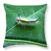 Cool Caterpillar Throw Pillow