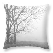 Cool Damp Foggy Throw Pillow