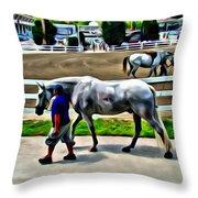 Cool Down At Devon Throw Pillow