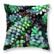 Cool Hued Burro's Tails In The Hot Desert Throw Pillow